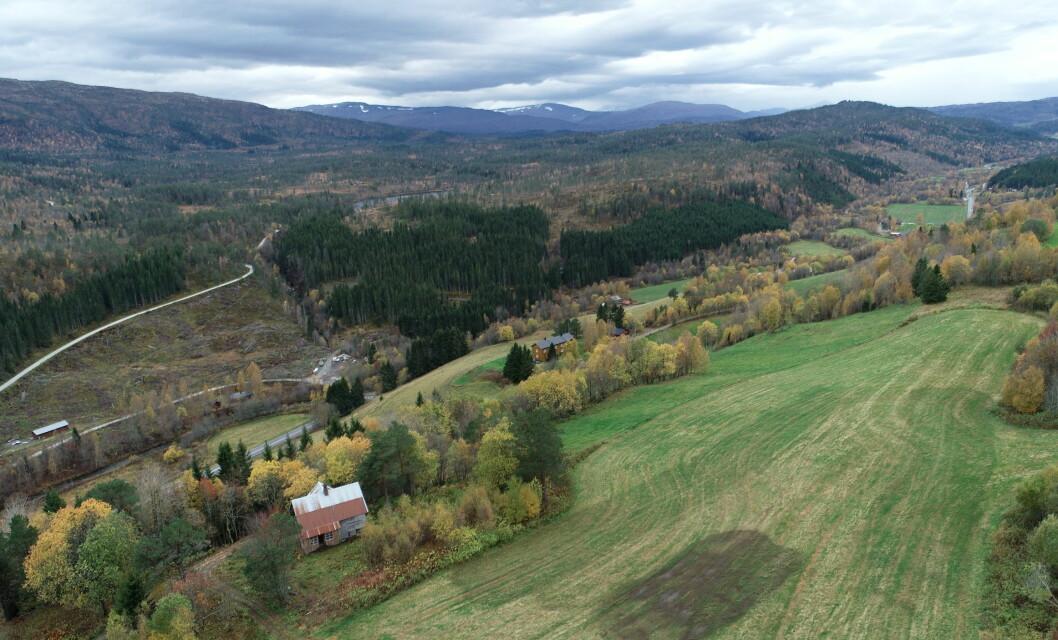 Oppheim med utsikt over Furuhaugen og Furuhaugmarka