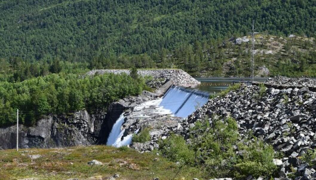 Gråsjødammen