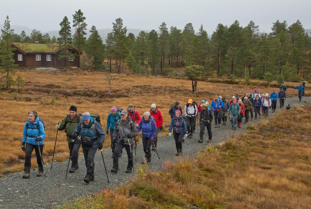 Vi begynte å gå fra enden av Langvassveien i Helgetunmarka.