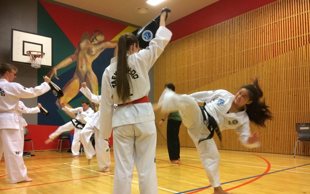 Fra Taekwon-Do-trening