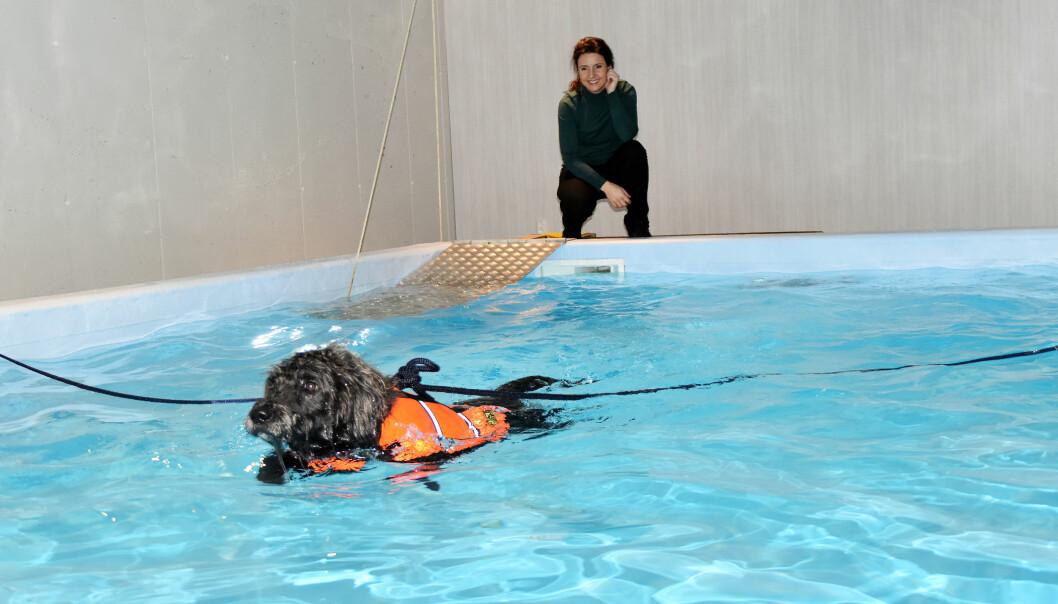 Rusky fikk æren av å innvilge svømmebassenget