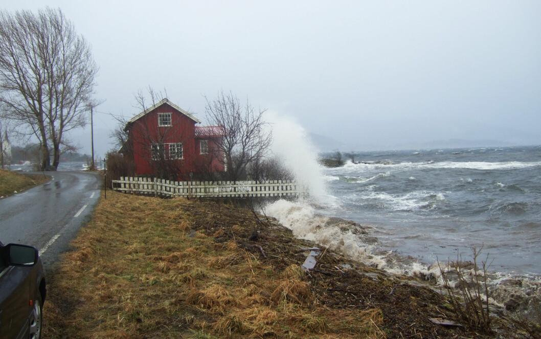Stormflo, 10. januar 2008. Skjæret i Stangvik, Surnadal kommune.