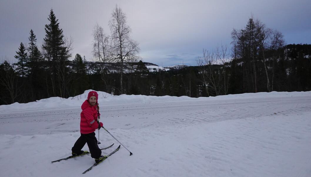 Vi snudde halveis, der løypa krysser bilveien som går til Skavlia og Helgetunmarka, da ble turen på omtrent 3 kilometer, tur-retur. Det er også kjørt løyper i Helgetunmark, men det var før helga, så de løypene er nok litt isete og harde. Det er også mulig å parkere på Skavlia (bomveg) og gå hit.