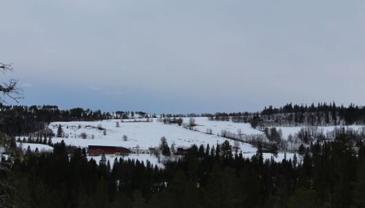 Fra skiløypa kan du se mot Helgetungårdene.