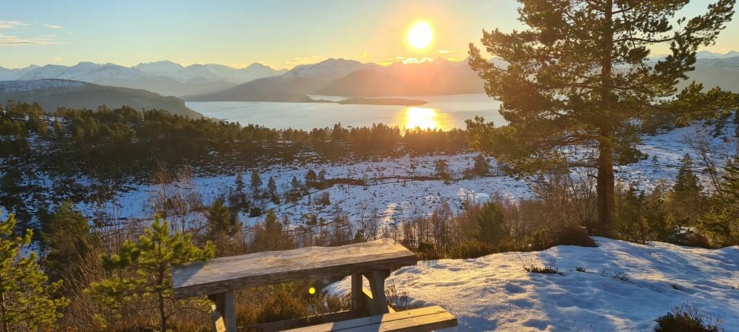 Utsikt fra Flesasetra mot Stangvikfjorden/Neslandet med mer.