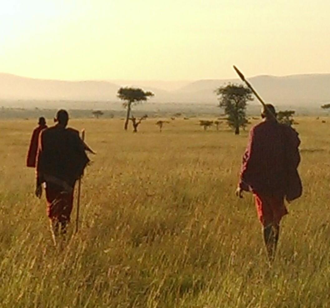 Walking safari i Masai Mara.