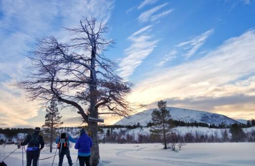 Månedens tur i mars går til Helgetunsetra.