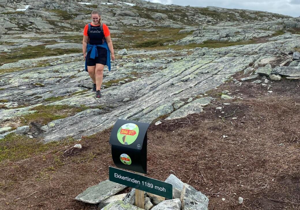 Ihne på toppen av Ekkertind i Sunndal kommune i juli 2020