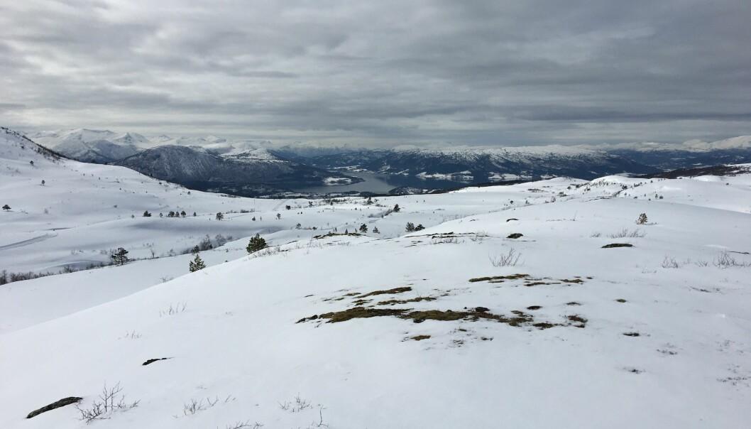 Flotte forhold, men snøen forsvinner raskt nå som det blir mildere