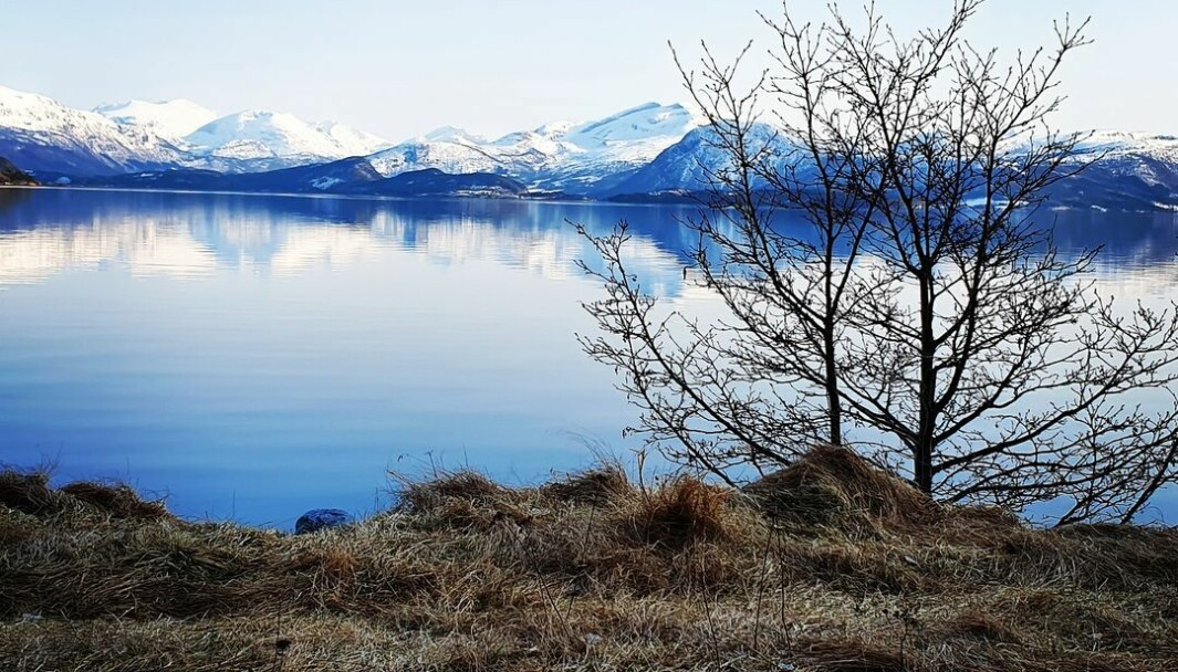 Flesastranda. Blikkstille fjord. #nordmøre