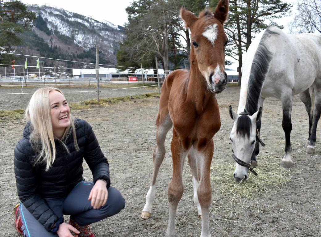 Malin Ulvestad ble plutselig eier av to hester