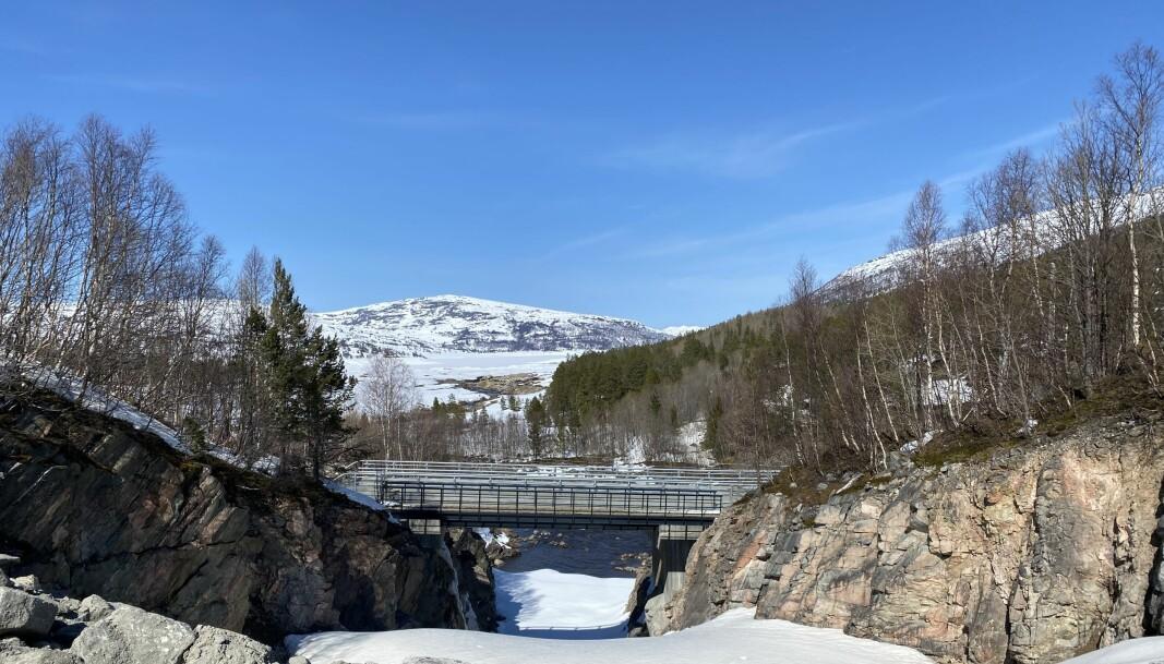 Utsikt mot Follsjøen fra steinbruddet.