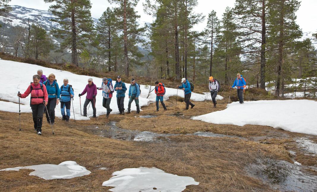 På vei fra Bjørnsledet til Gjøtet på toppen av Børsetliin. Gikk for det meste på barflekker.