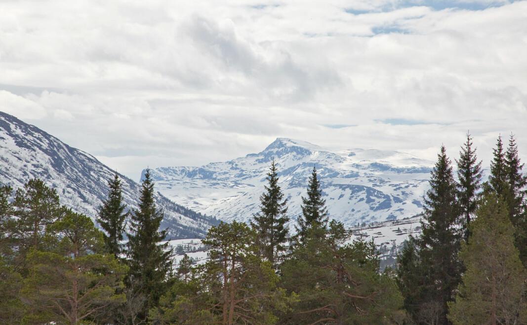 """Vi gikk ned til Bjørnsledet etter seterveien fra Aune. """"Trollheimens dronning"""", Snota, er det vanskelig å ta feil av. Et virkelig majestetisk fjell!"""