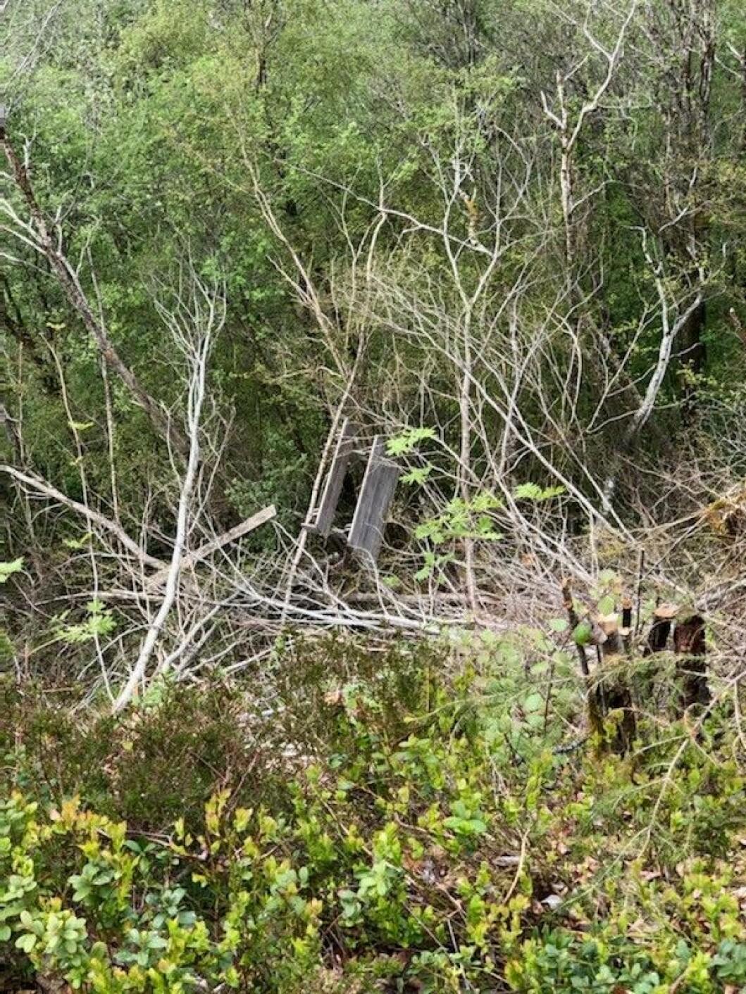 Slik ligger benken i dag, et godt stykke ned i den bratte lia