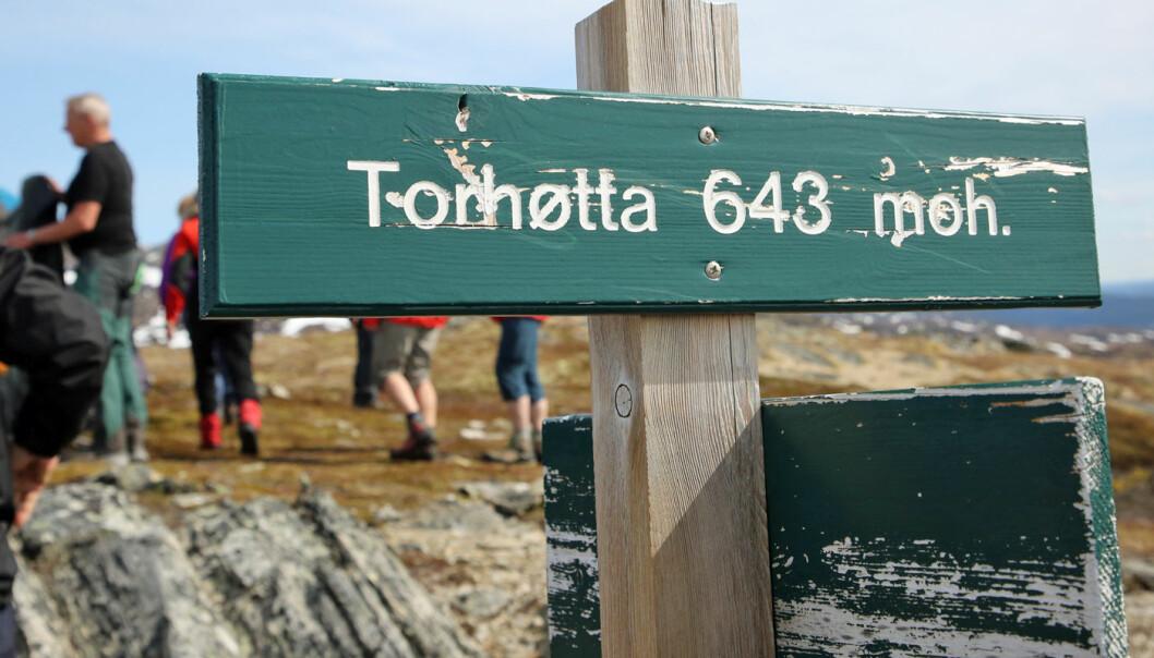 Og så var vi oppe på Torhøtta, etter å ha gått 1,5 km og steget 385 høydemeter.