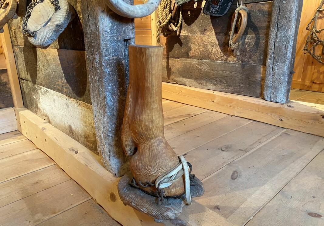 Ola L. Løfaldli var en viktig bidragsyter til museet. Her en hestefot som han har skåret ut i tre.