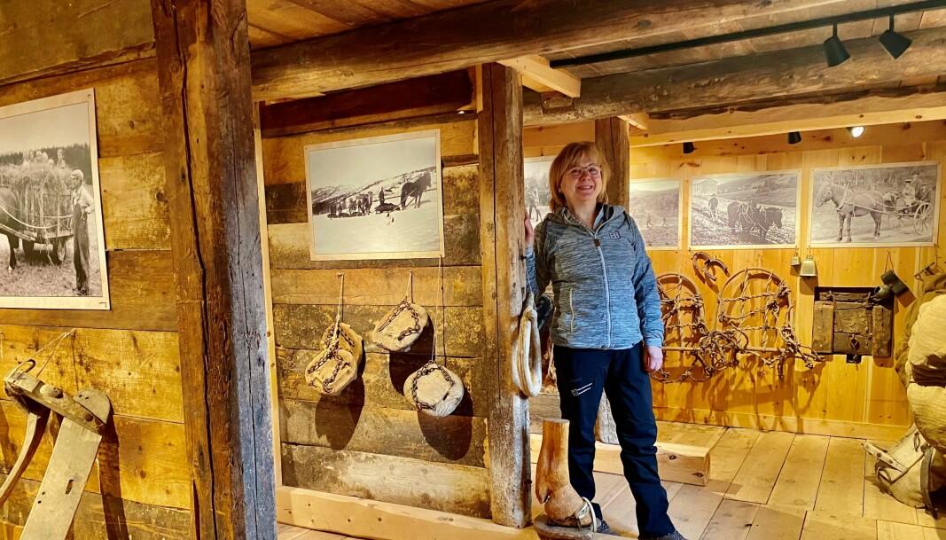 Samling av gammelt hesteutstyr i stallen er også en av årets nyheter på skimuseet.