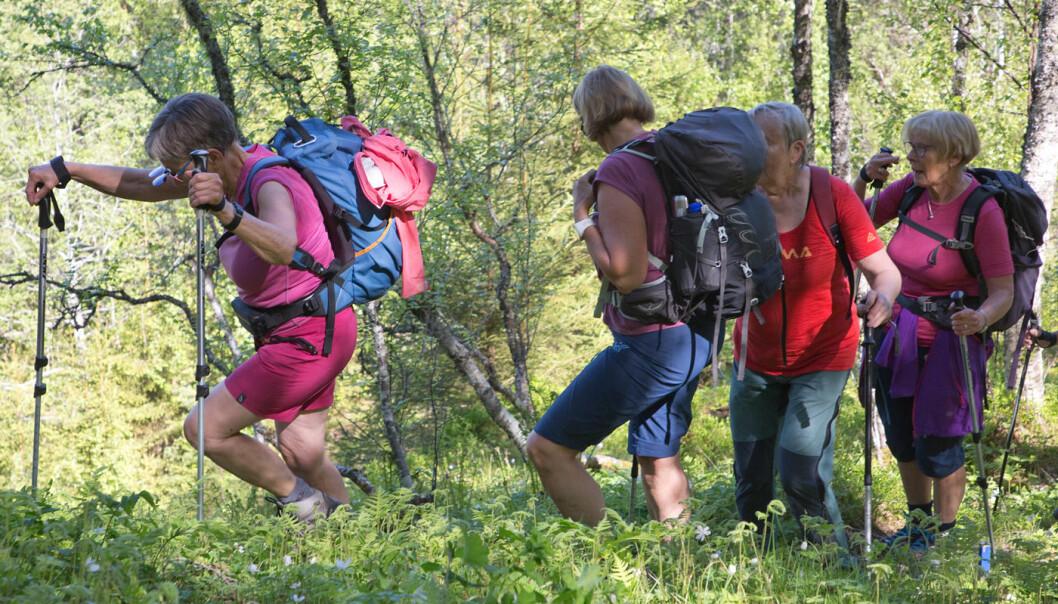 """Fortsatte oppover ei veldig bratt skogli. Tungt! Turen er da også merket som """"Rød-tur"""" (Krevende)."""