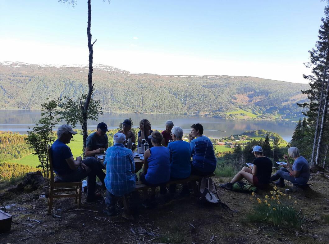 Blautkake og kaffe på skogstua.