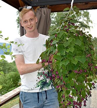 Blodbeger er en av favorittplantene til Ola.