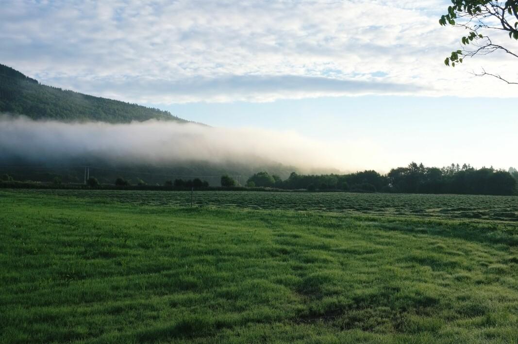 Øvre Surnadal i morgentåke