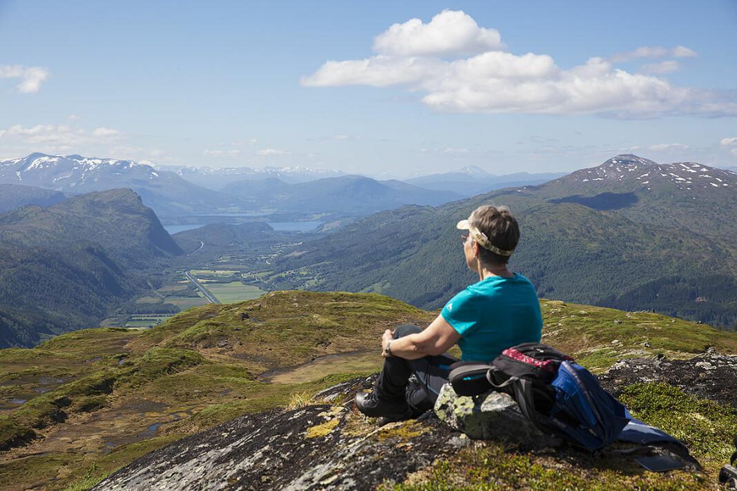 Utsyn vestover fra Svarrafjellet.