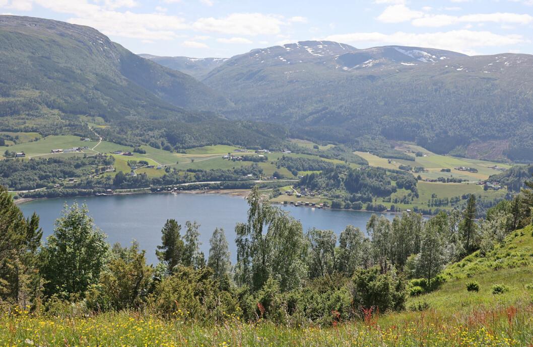 Utsikt over Vinjefjorden mot Oppsal og Staurset. Sollia ligger 310 moh. En svært bratt sti går ned til fjorden.