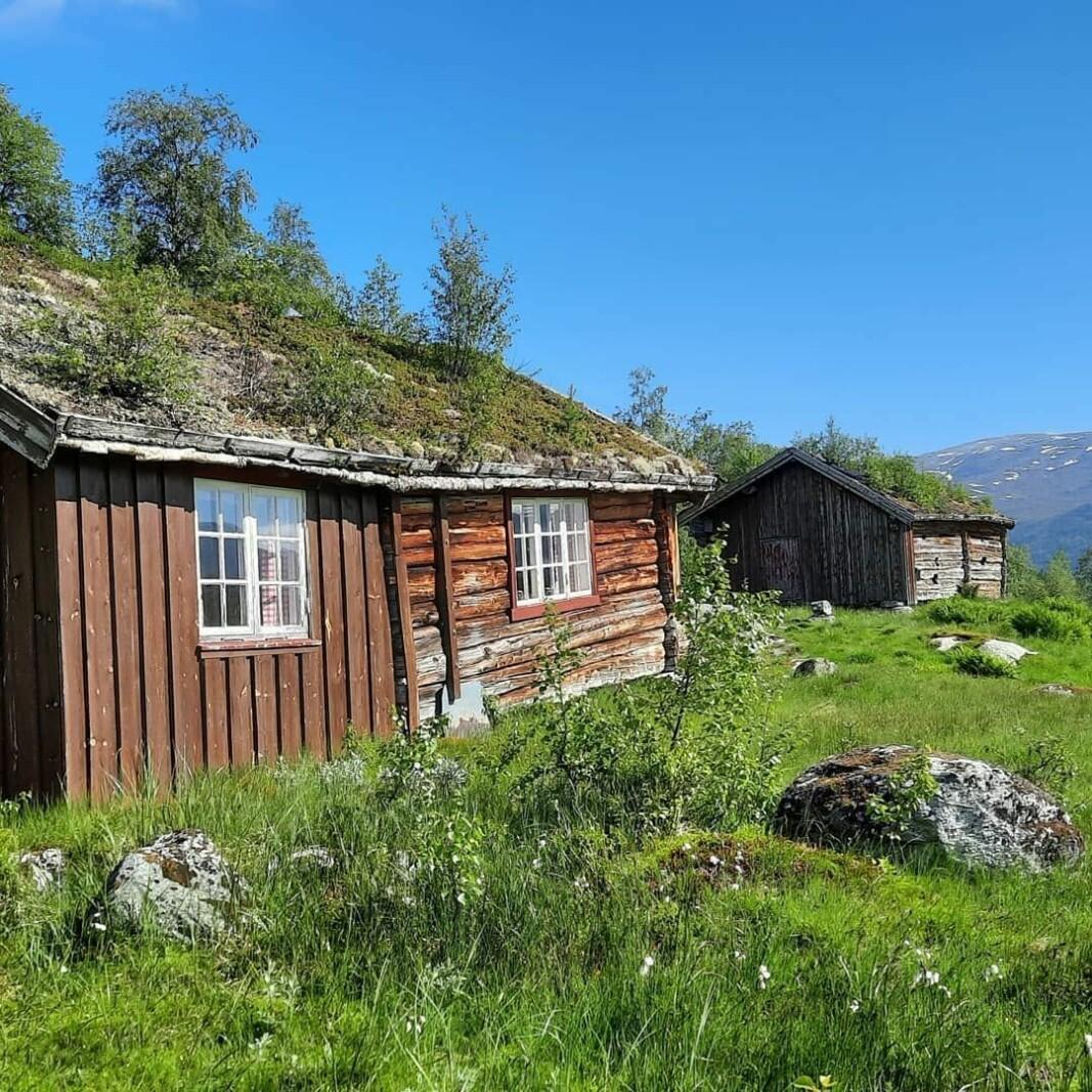Tur til Eiterdalsetra, og videre opp til Eiterdalsvatnet. #trollheimen
