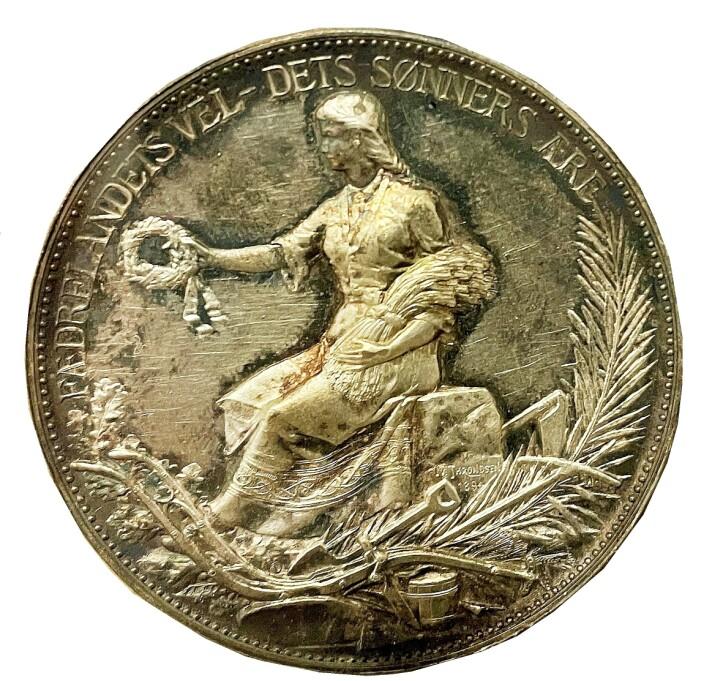 Martinus vart heidra med gullmedalje for banebrytande gardsdrift. Men «Fædrelandets Vel» galdt ikkje berre «Dets Sønners Ære». Motivet peikar vel også på «Dets Døtres Ære» - medrekna Tomine?
