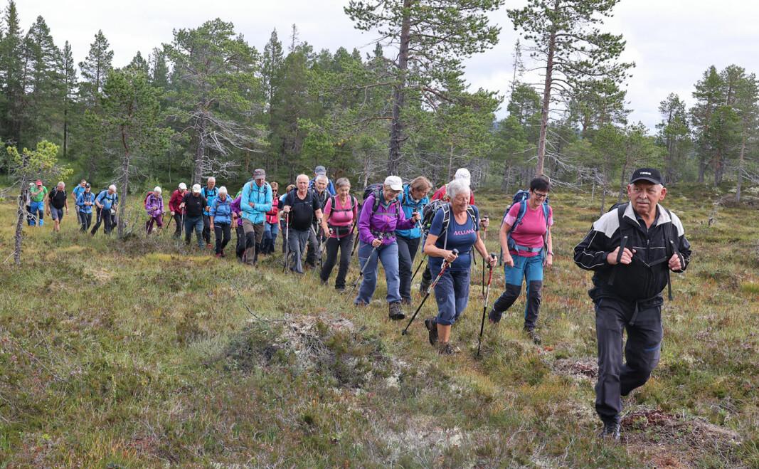 Kjentmann Magne S. i spissen for en lang rekke med ivrige turgåere i Svinsåsmarka.