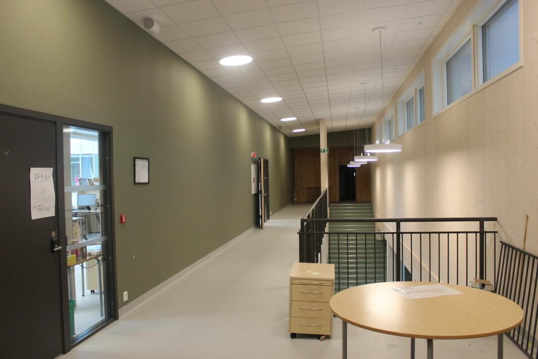 Grønne og brune vegger og massiv tre går igjen i hele bygget