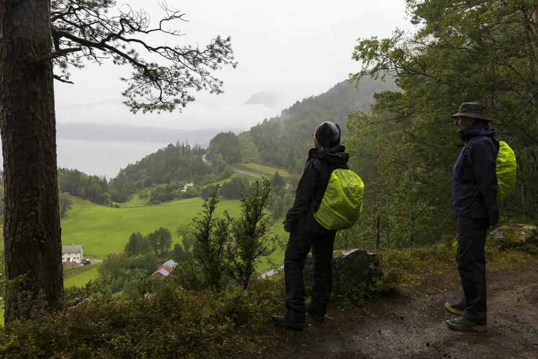 Utsikt til Svinviks arboret