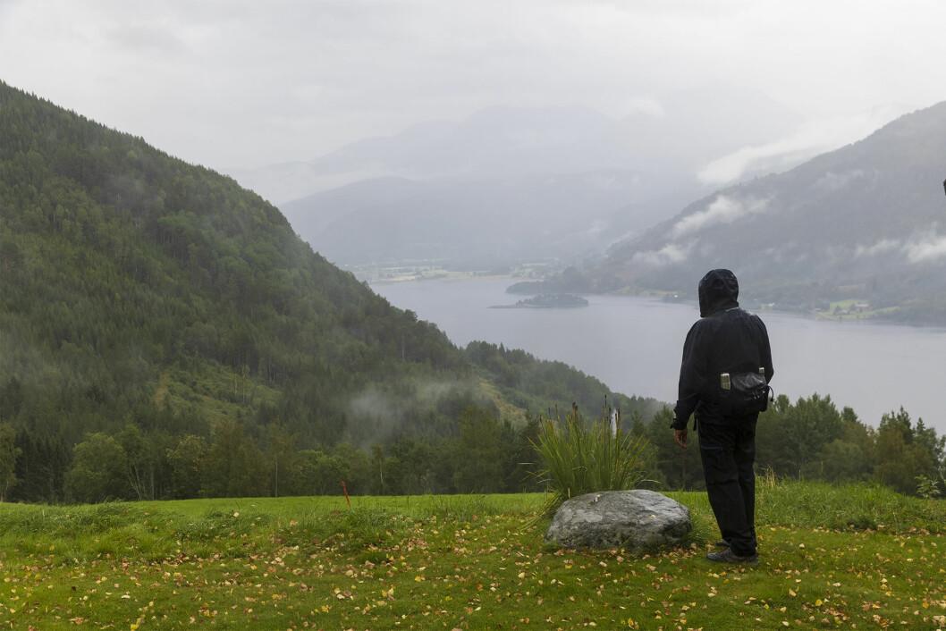 Vakker utsikt frå Hjellnes