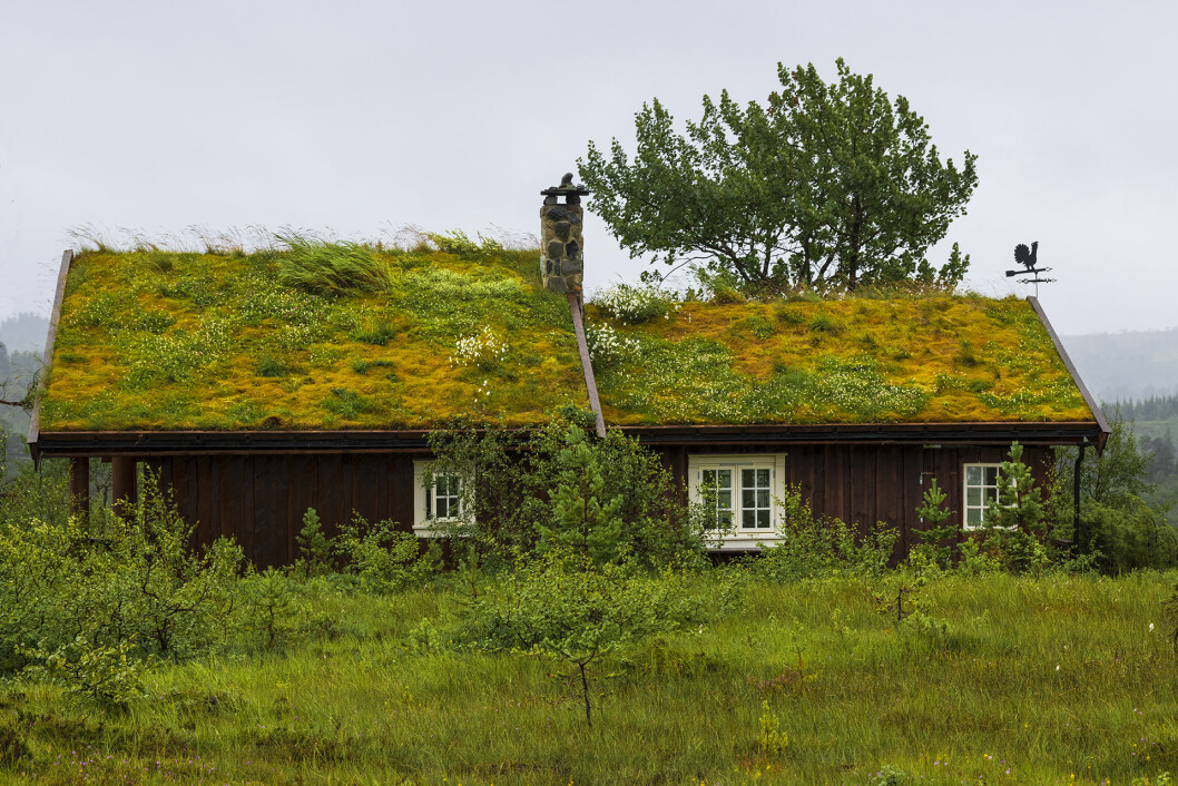 Innom Snotsjå, Anne og Brage-hytta