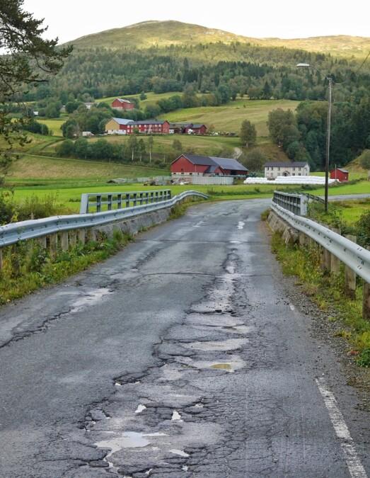 Det er ikke vanskjelig å forstå frustrasjonen til pendlere og yrkessjåfører som må kjøre på fylkesvei 343 i Lomunddalen.