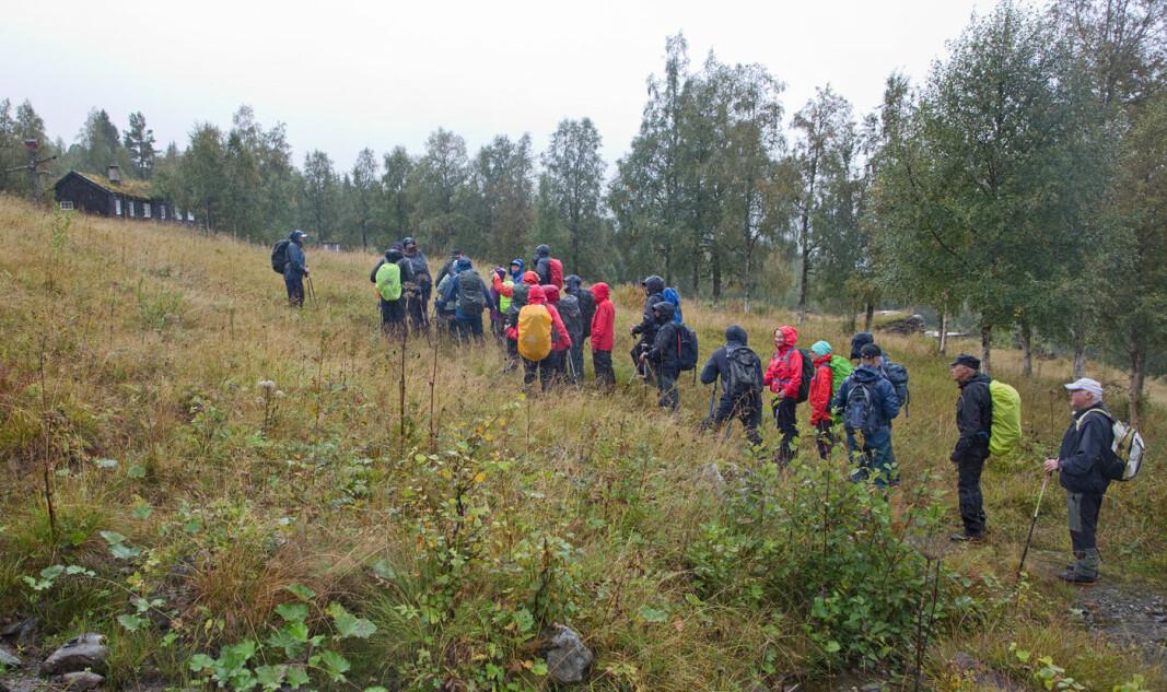 Første del av rundturen vår gikk fra Rørvatnet til Haugasetra.