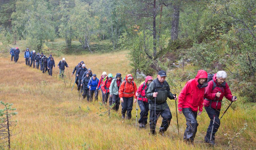 28 turgåere fikk sett mye på denne rundturen. Den gikk gjennom høyvokst skog, over mange myrer og forbi seterhus og hytter.
