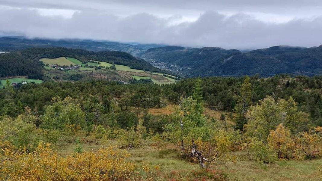 Løkken inni dalen.