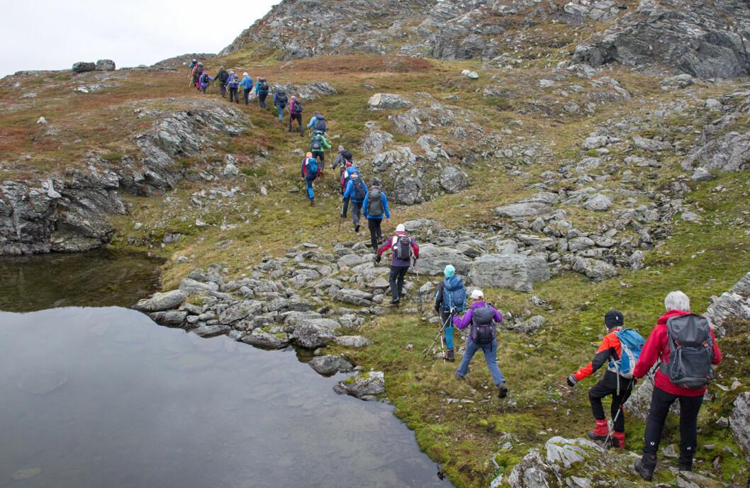 Enda et bevis på hvor lett og trivelig det er å gå i fjella i nærheten av Leverdalen.
