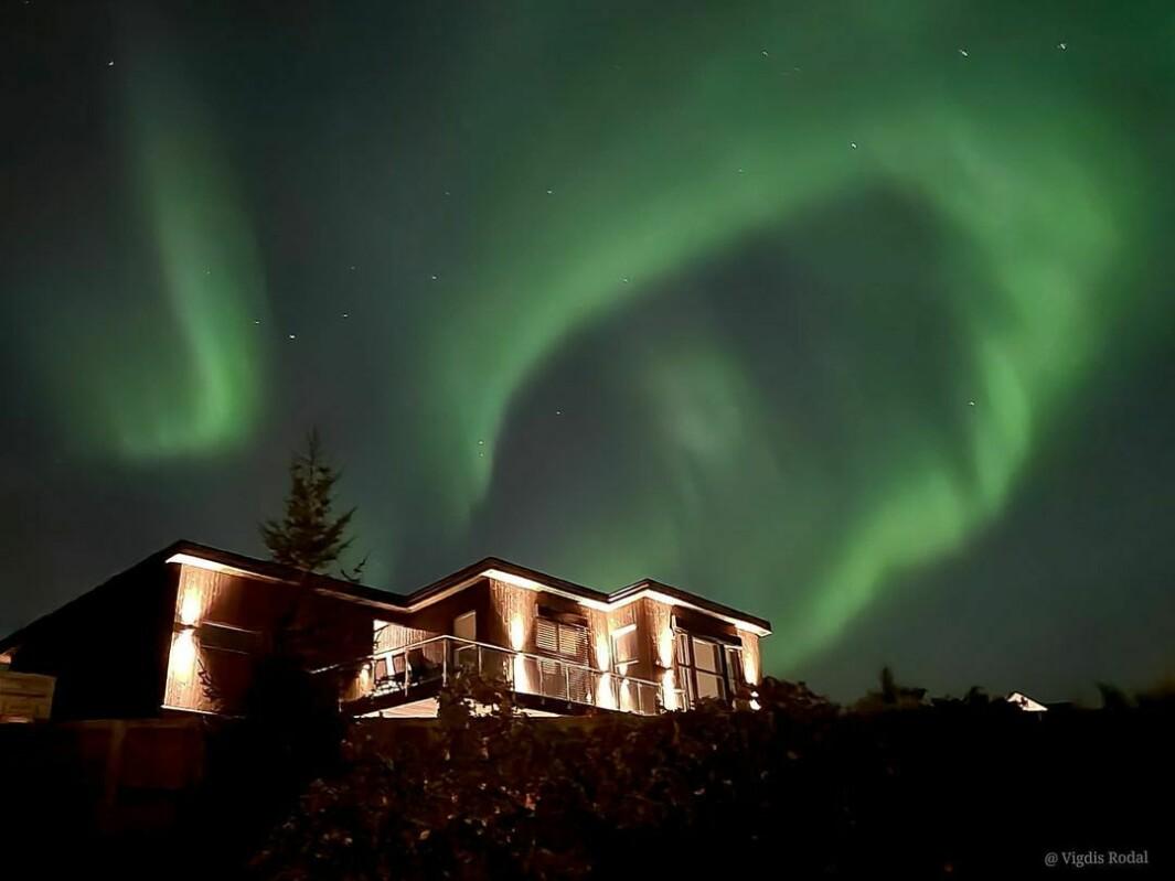 Nordlyset sett fra Skogvegen i går kveld 🌌🤩 caption