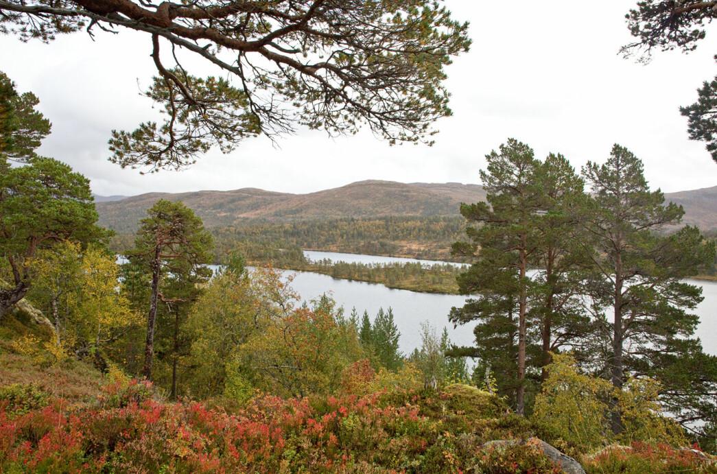 Et siste bilde av Oppsalvatnet, tatt like før vi kom tilbake til bilene. Det var bare lovord å høre etter fjellturen. Og det er jo selvsagt hyggelig!