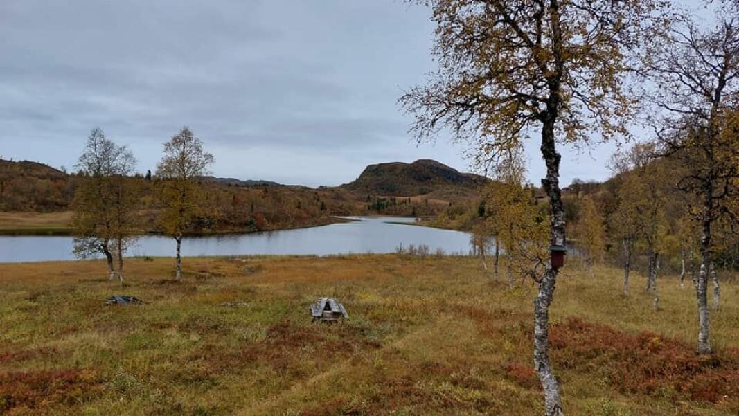 På andre enden av Snausvatnet