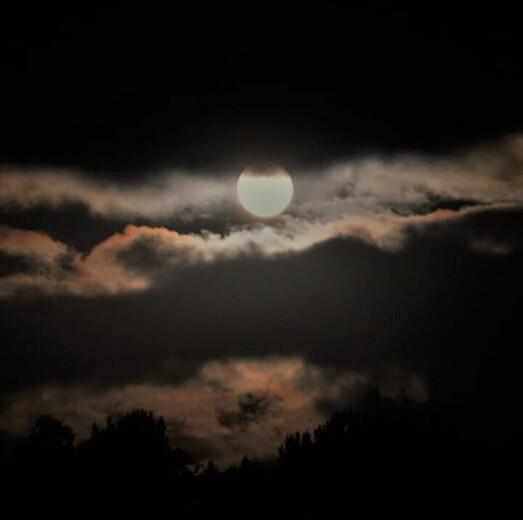 Kveldens lyspunkt