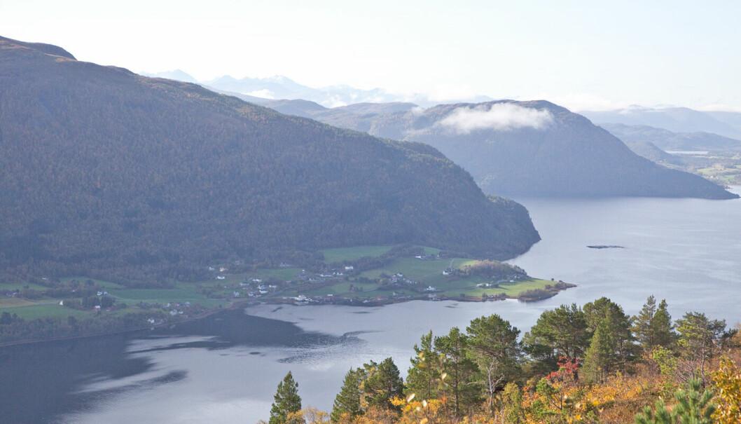 Ser rett mot Bølandet med Bølia som går oppover til venstre i bildet.