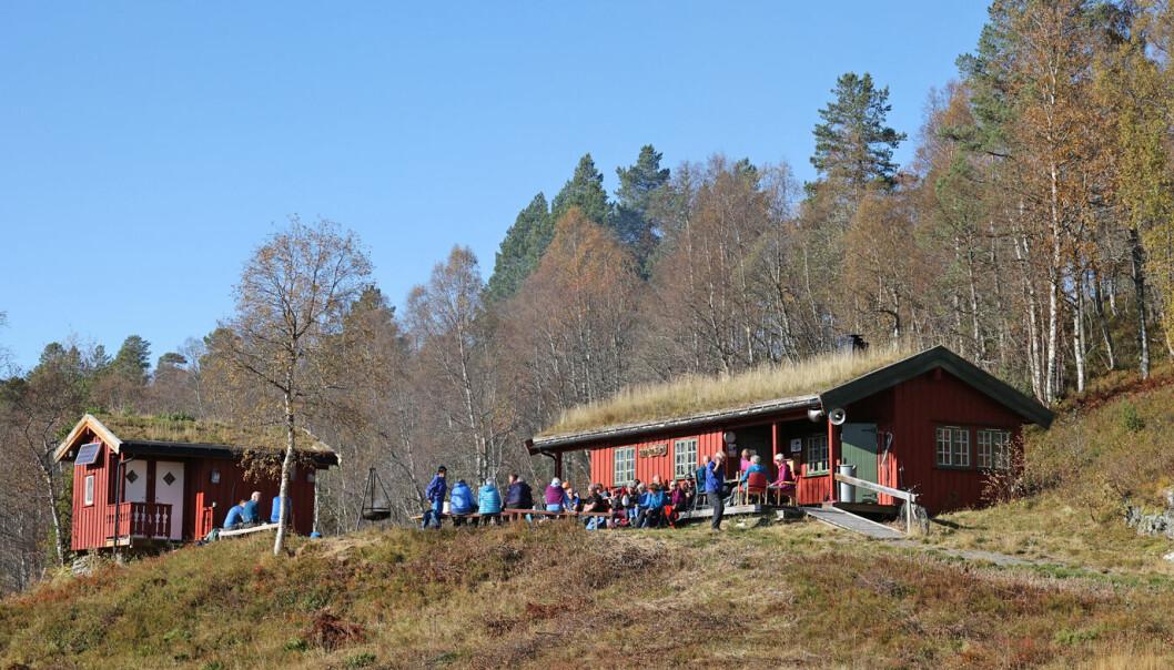 Det ble en veldig lang pause ved Tørsåsløa i finværet.