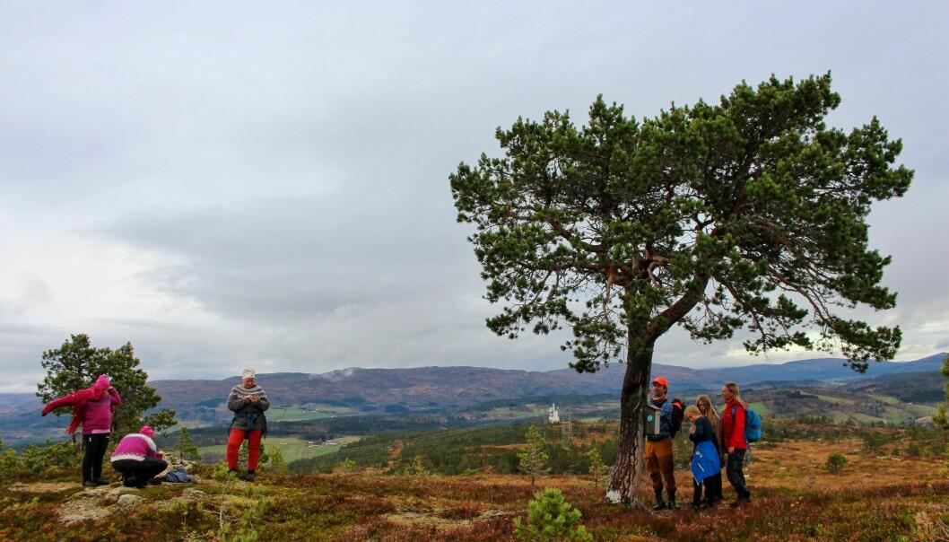 Folksomt ved trimboksen på Langkåsen. Familien Bø Øyasæter skriver seg inn i boka og #utpåturvenner kler seg om til lunsj.