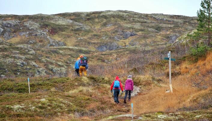 Familien Bø Øyasæter fortsetter langs stien mot Tifjellet.