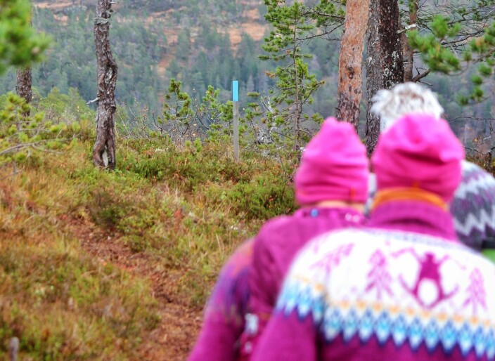 Stien til Langkåsen er godt merket med blåmalte pinner og skilt.